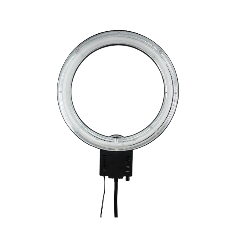 Studio Continuous Lighting Vs Flash: EACHSHOT CN-65C Pro 220V 65W 5400K Continuous Fluorescent
